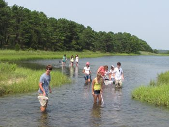 Summer Science at Waquoit Bay Reserve