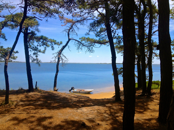 Camping at Waquoit Bay Reserve