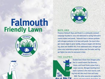Falmouth Friendly Lawns