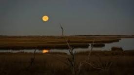 fullmoon over marsh