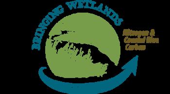 Bringing Wetlands to Market Nitrogen& Coastal Blue Carbon