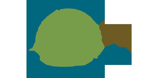 Bringing Wetlands to Market Phase 1