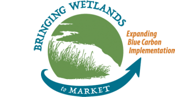 Bringing Wetlands to Market Expanding Blue Carbon Implementation