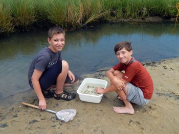 Friends of the Waquoit Bay Reserve