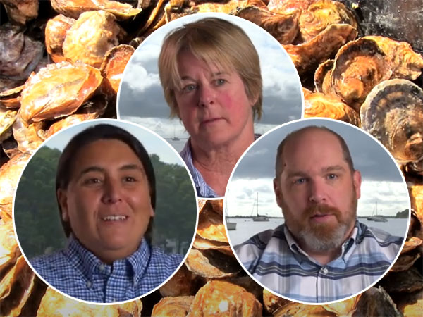 Oyster Aquaculture Research Project